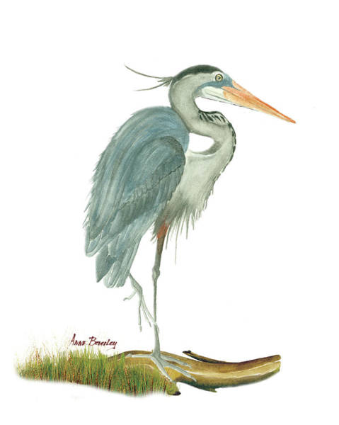 Painting - Blue Heron by Anne Beverley-Stamps