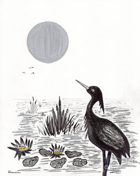 Drawing - Crowned Night Heron Lily Pond Paradise In Ink D2 by Ricardos Creations
