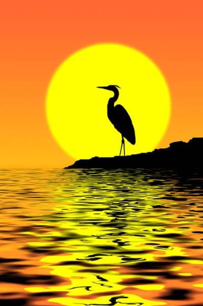 Wall Art - Photograph - Blue Heron Sunset by Rich Leighton