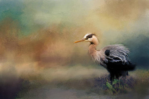 Photograph - Blue Heron With Texture by Eleanor Abramson