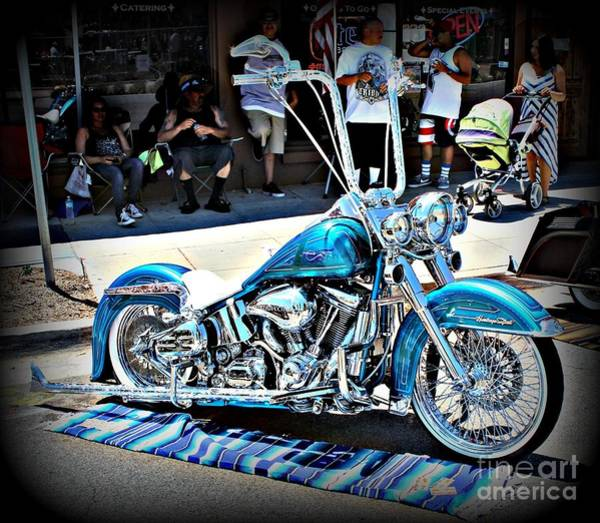 Wall Art - Photograph - Blue Hog by Jenny Revitz Soper