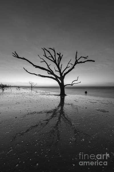 Wall Art - Photograph - Blue Hour At Botany Bay Island Bw  by Michael Ver Sprill