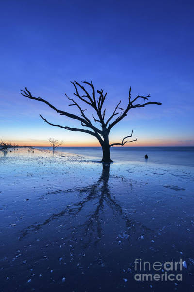 East Bay Photograph - Blue Hour At Botany Bay Island by Michael Ver Sprill