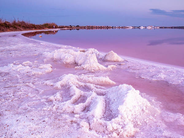 Wall Art - Photograph - Blue Hour At The Pink Lake by Mike Walker