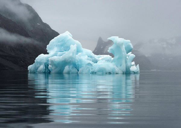 Neiman Photograph - Blue Iceberg In Fog Greenland 7022 by Bob Neiman
