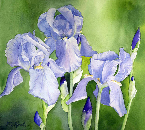 Painting - Blue Iris by Marsha Karle