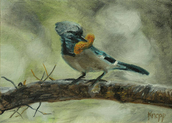 Painting - Blue Jay by Kathy Knopp