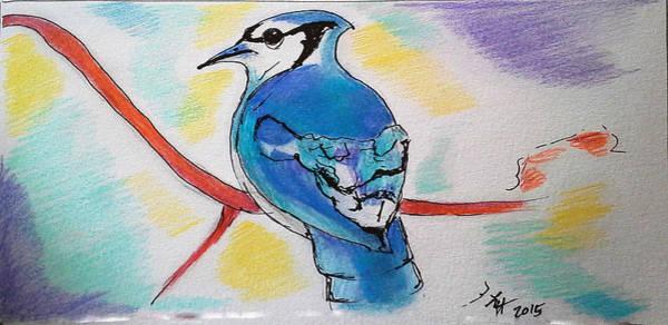 Drawing - Blue Jay by Loretta Nash