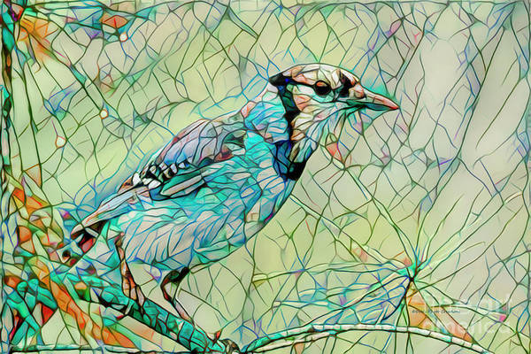 Wall Art - Photograph - Blue Jay Mosaic by Deborah Benoit