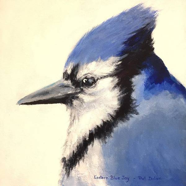Painting - Blue Jay by Pat Dolan