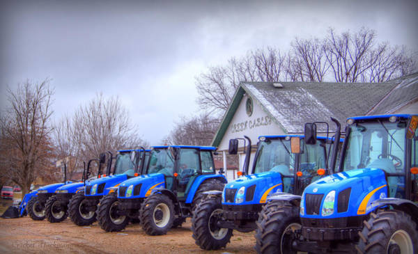 Photograph - Blue Line Up by Cricket Hackmann