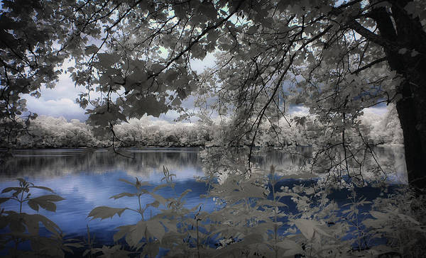Infrared Photograph - Blue Love by George Saad
