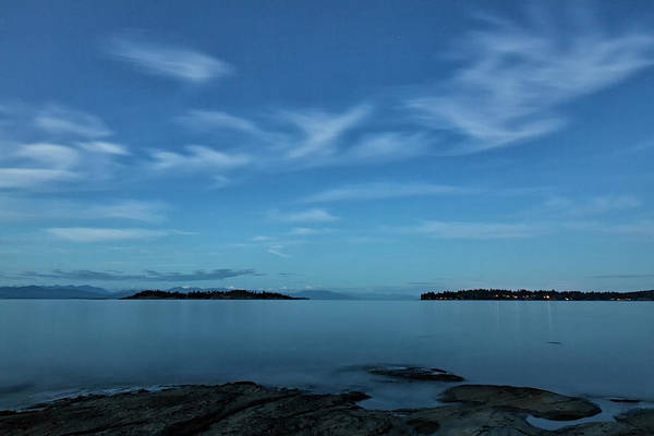 Photograph - Blue Madrona by Randy Hall