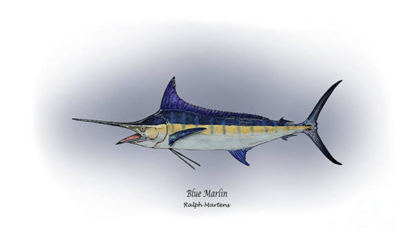Angling Art Wall Art - Painting - Blue Marlin by Ralph Martens