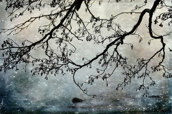 Photograph - Blue Mist by Randi Grace Nilsberg