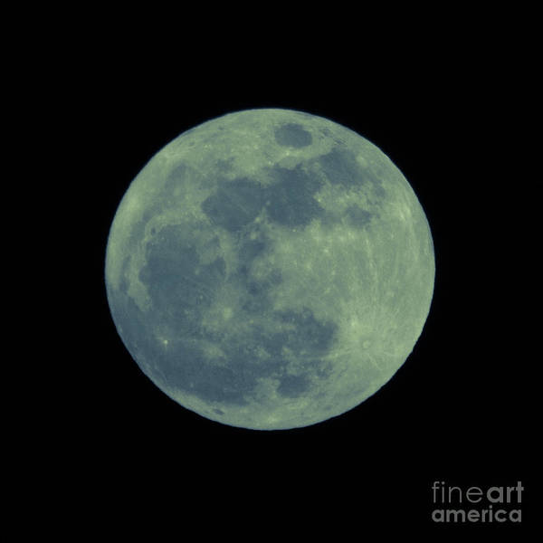 Photograph - Blue Moon by Cheryl McClure