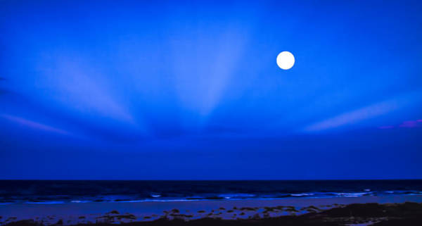 Photograph - Blue Moon by Dave Bosse