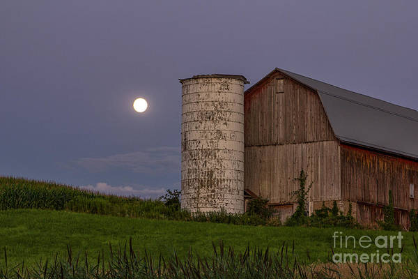 Photograph - Blue Moon Rising by Rod Best