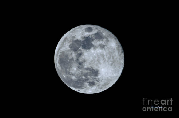Photograph - Blue Moonscape Photography 3644a by Ricardos Creations