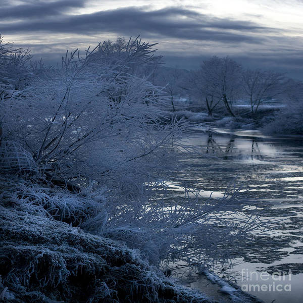 Wall Art - Photograph - Blue Morning by Angel Ciesniarska
