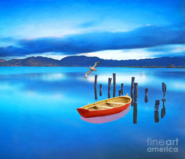 Wall Art - Photograph - Blue Morning by Laura D Young