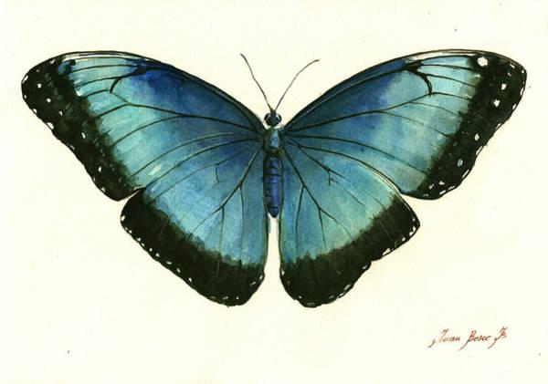 Wall Art - Painting - Blue Morpho Butterfly by Juan Bosco