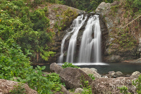 Photograph - Blue Mountain Waterfall by Charles Kozierok