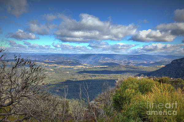 Photograph - Blue Mountains, New South Wales, Australia by Elaine Teague