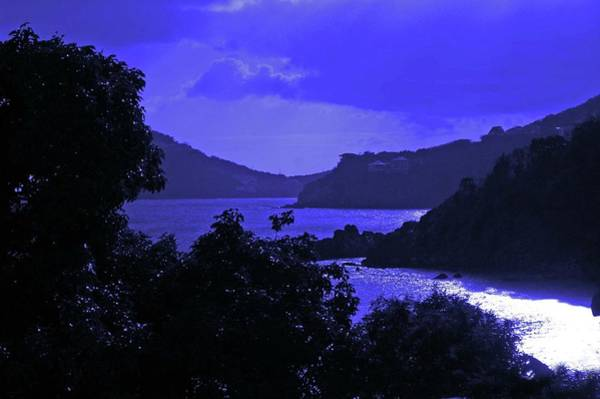 Digital Art - Blue Nights by Michael Thomas