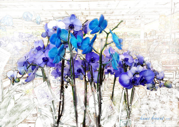 Houseplant Mixed Media - Blue Orchids 3 by Kume Bryant
