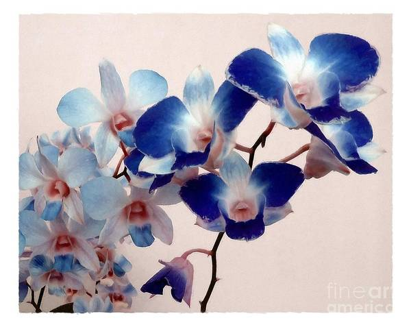 Mixed Media - Blue Orchids by Patricia Strand