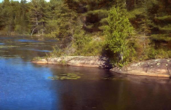 Blue Pond Marsh Art Print