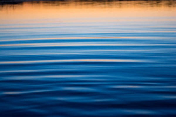 Photograph - Blue Reflections by Parker Cunningham
