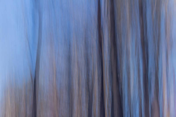 Photograph - Blue Relief by Davin McLaird