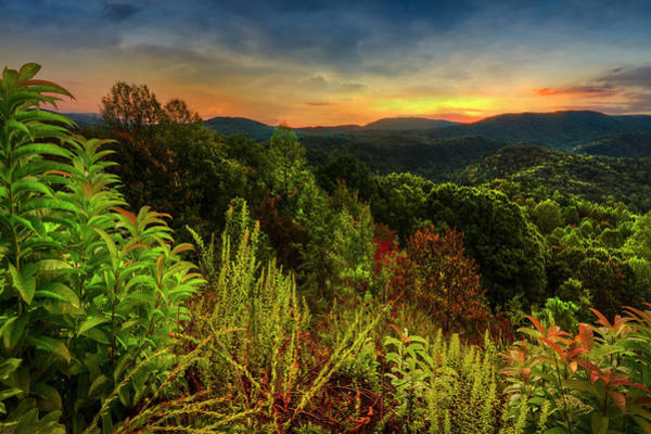 Photograph - Blue Ridge Mountainside Overlook by Debra and Dave Vanderlaan