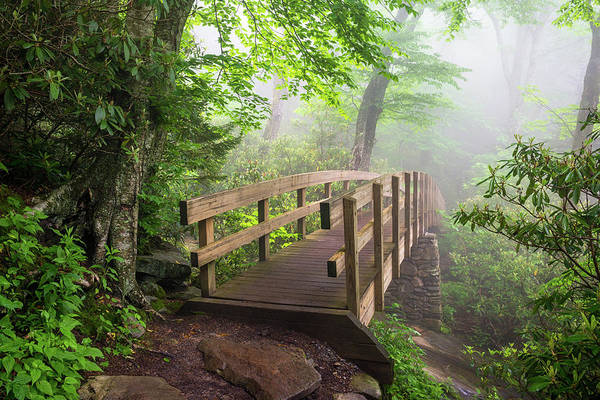 Appalachian Mountains Photograph - Blue Ridge Parkway Hiking Tanawha Trail Rough Ridge by Dave Allen