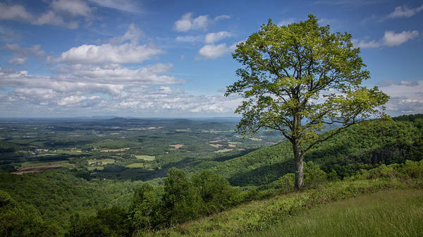 Photograph - Blue Ridge Parkway Scenic View by James Woody
