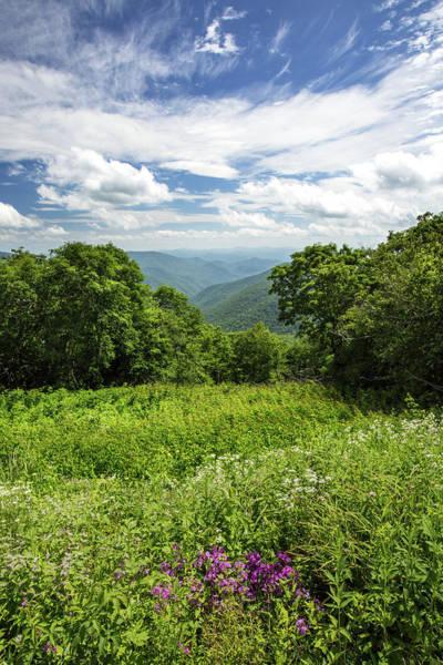 Photograph - Blue Ridge Summer by Jim Neal
