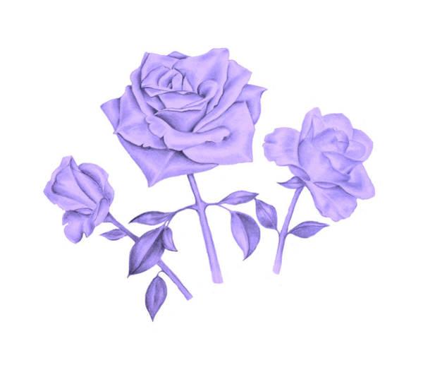 Digital Art - Blue Rose by Elizabeth Lock