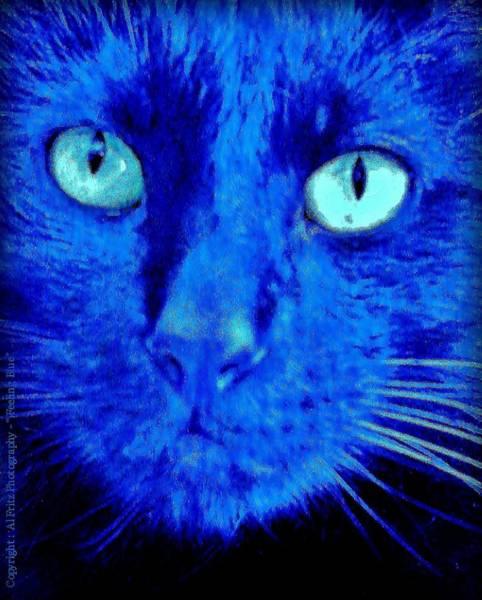Photograph -  Blue Shadows by Al Fritz