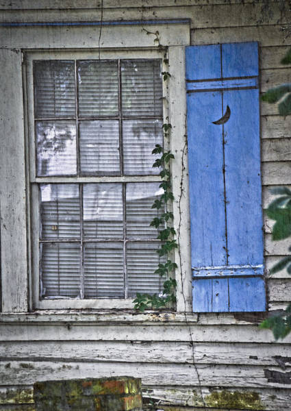 Wall Art - Photograph - Blue Shutter Two by Linda Brown