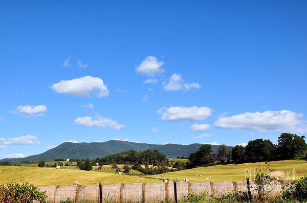 Rockbridge County Photograph - Blue Skies by Todd Hostetter