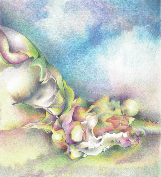 Organic Form Drawing - Blue Sky by Bodhi