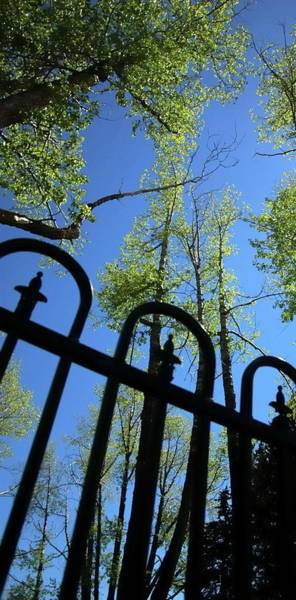 Photograph - Blue Sky Fence by Jerry Sodorff