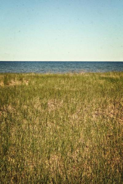 Holland State Park Photograph - Blue Sky Green Grass by Michelle Calkins