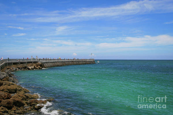 Photograph - Blue Sky - Green Water Jetty by Tom Claud