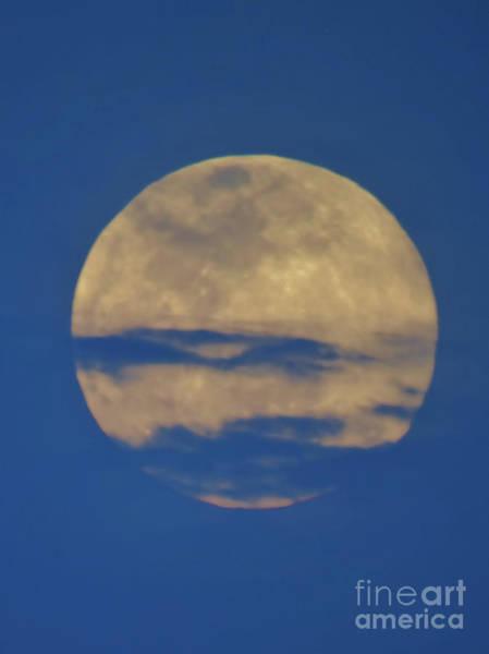 Photograph - Blue Sky Micro Moon by D Hackett