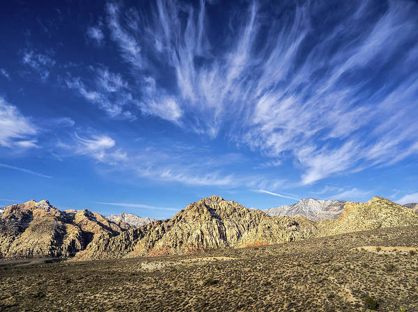 Photograph - Blue Sky Nevada by Martin Gollery