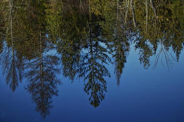 Photograph - Blue Sky Reflection by Dale Kauzlaric