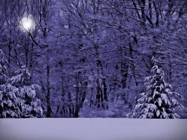 Photograph - Blue Snow by David Dehner